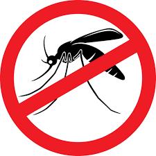 Eloigner les moustiques avec les huiles essentielles