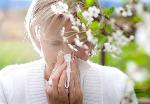 allergie respiratoire acariens rhumes des foins blattes poussi res soin naturel mon. Black Bedroom Furniture Sets. Home Design Ideas